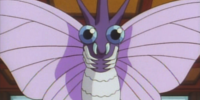 Koga's Venomoth