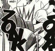 Brawly's Hariyama Counter as Makuhita