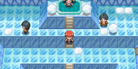Snowpoint City Gym