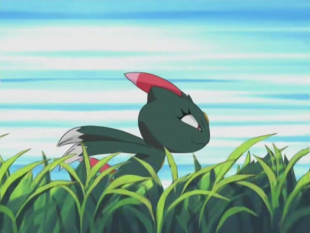 File:Harrison Sneasel Quick Attack.png
