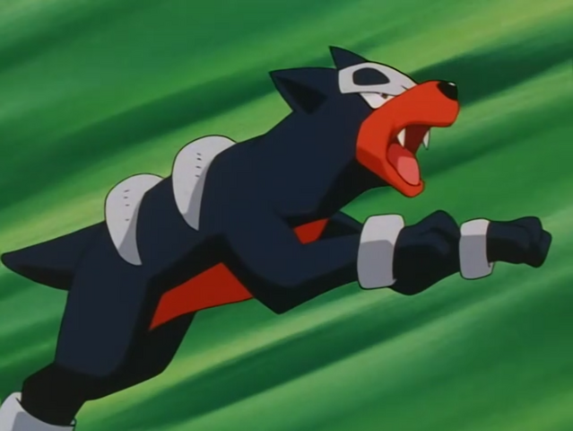 File:Cassidy Houndour.png