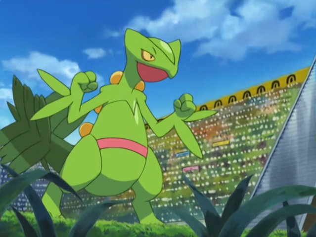 File:Tyson Sceptile.png