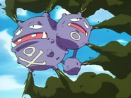 PLEEI Weezing Smokescreen