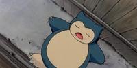 Snorlax (anime)