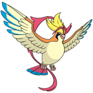 018Pidgeot Mega Dream