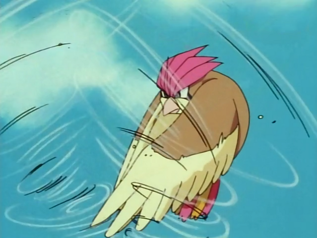 File:Ash Pidgeotto Gust Counterattack.png