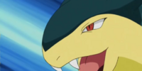 Trainer School's Typhlosion