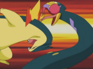 Mr Moore Typhlosion Headbutt