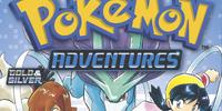 Pokémon Adventures: Volume 13