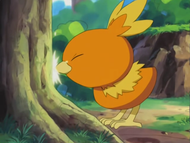 File:May Torchic Peck.png