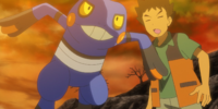 Brock's Croagunk