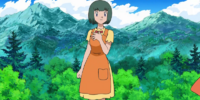 Teacher (Sinnoh)
