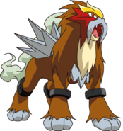 244Entei DP anime