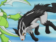 Butch Mightyena Tackle
