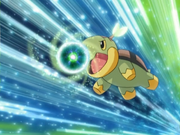 Ash Turtwig Energy Ball