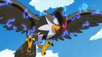 Brave Bird recoil.png