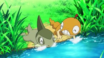 File:Scraggy and Axew playing.jpg