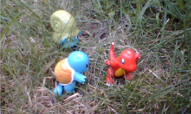 File:Pokemon4.PNG