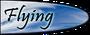 Flying-Type