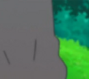 Bulbasaur Asha