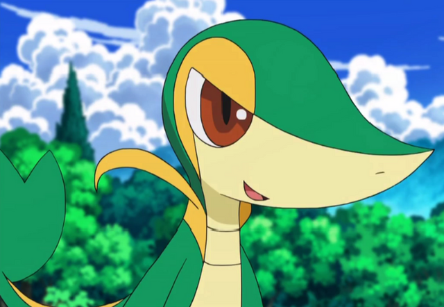 File:Snivy pic.png