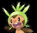 Chespin (Pokémon)