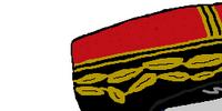 Francia di Vichyball
