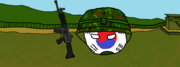ROK Armed Forcesball - Copy