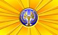 Orange Defense Network Flag.png