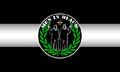 Men in Black Flag.jpg