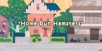 Home Run Hamsters