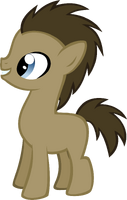 Foal doctor whooves