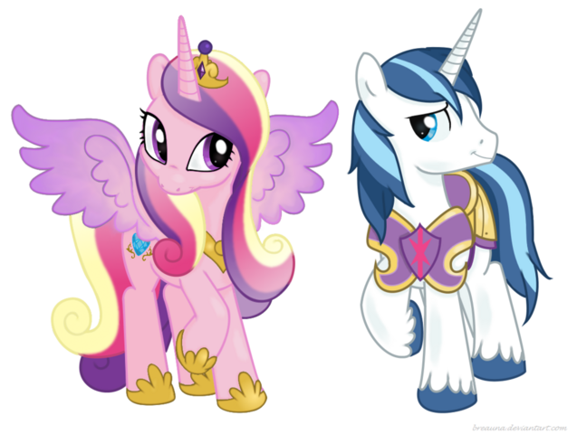 File:Shining Armor and Princess Cadance.png