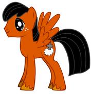 Buzz Pony
