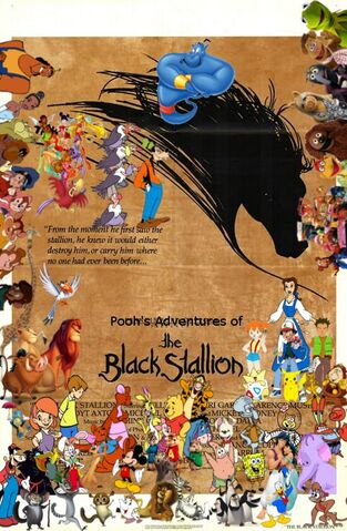 File:Pooh's Adventures of The Black Stallion.jpg