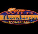 Pooh's Adventures of The Wild Thornberrys Movie