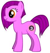 Cici's Pony Form