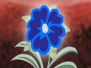 Heart flower blue