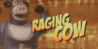 Raging Cow/Transcript