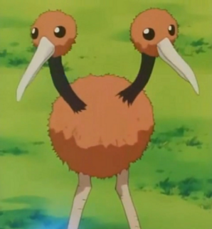 555px-Doduo anime