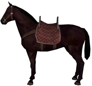 Hunting horse one