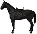 Saddle horse.png