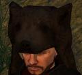 Bear helmet.png