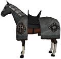 Aqs horse3.png