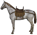 Steppe horse.png
