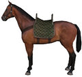 Hunting horse.png
