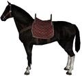 Hunting horse dark.png