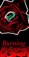Passion 4 BG