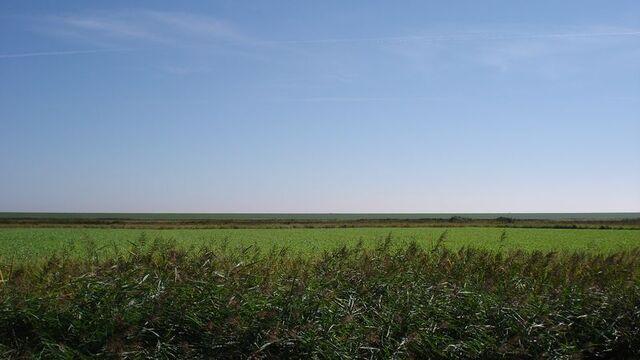 File:Grasslands.jpg