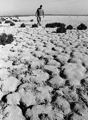Hondo Spain Drought